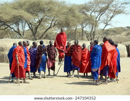 "SERENGETI , TANZANIA - JUNE 20 ;Group of male Maasai performing a  jumping dance on june 20, 2013 Tanzania. This jumping dance is part of a ""coming of age"" ceremony for Maasai warriors.  - stock photo"