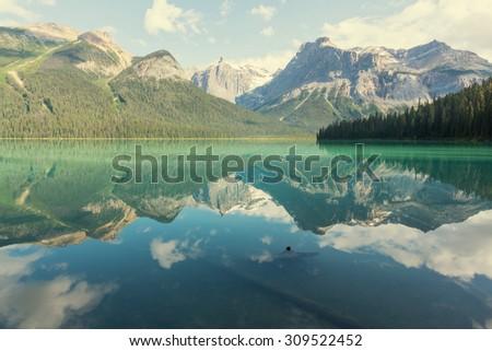 Serenity Emerald Lake in the Yoho National Park, Canada - stock photo