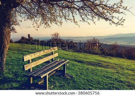 Serenity spring garden at sunrise - stock photo