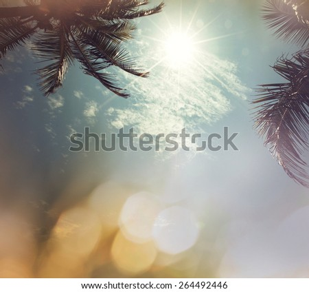 Serenity tropical background - stock photo