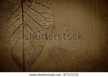 series of natural leaf pattern stamped on clay background - stock photo