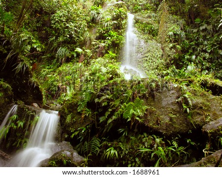 Series of small waterfalls along the trail to Middleham Falls, Dominica.