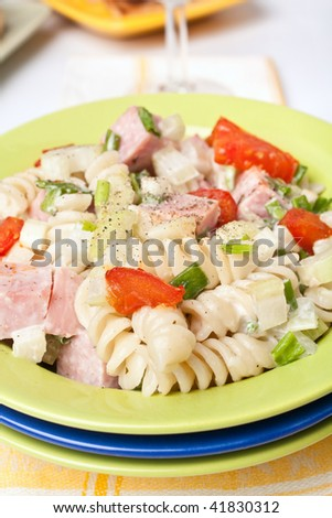 Serving of pasta, turkey, celery and fried tomatoes salad