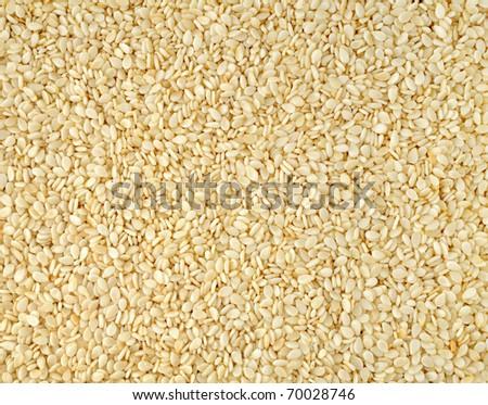 Sesame seeds horizontal background - stock photo