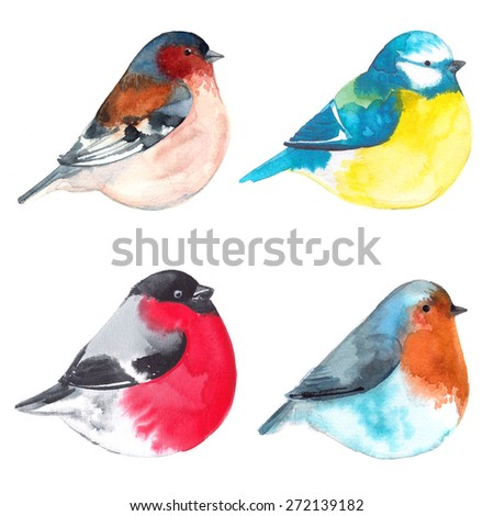 Set birds painted on watercolor paper. Etude birds on a white background - stock photo