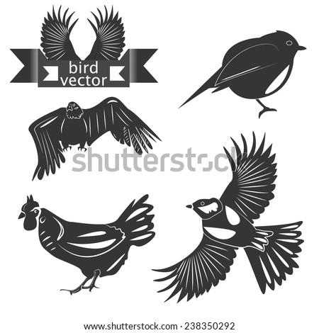 Set chicken, eagle, tits logo  - stock photo