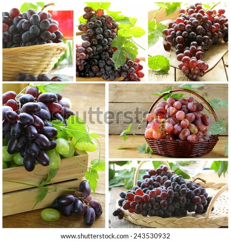 Set different variety red grapes  on a wooden table - stock photo