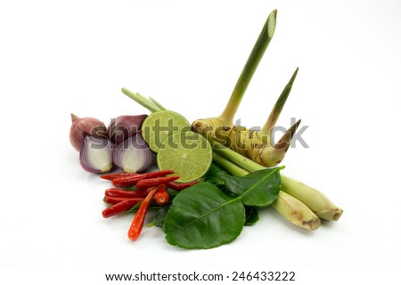 Set ingredient of thai spicy soup, tom yum is thai food  on white background. - stock photo
