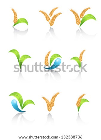 Set of agriculture design elements - stock photo