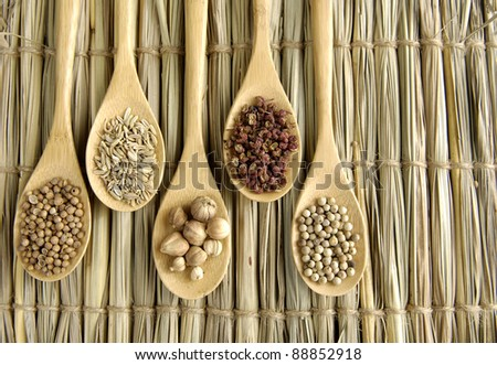 Set of Allspice, peppercorns and white peppercorns, nutmeg seeds on wooden spoon - stock photo