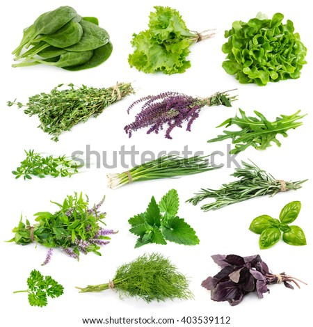 Set of aromatic herbs isolated on white background - stock photo