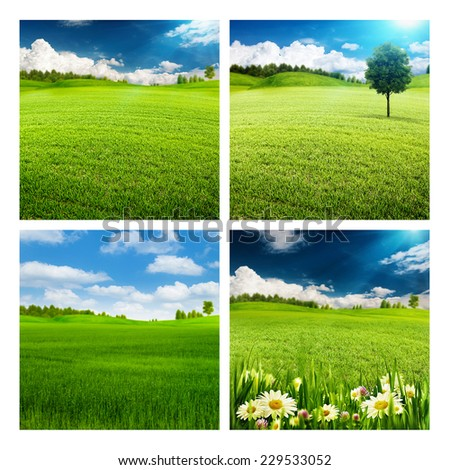 Set of assorted summer seasonal backgrounds for your design - stock photo