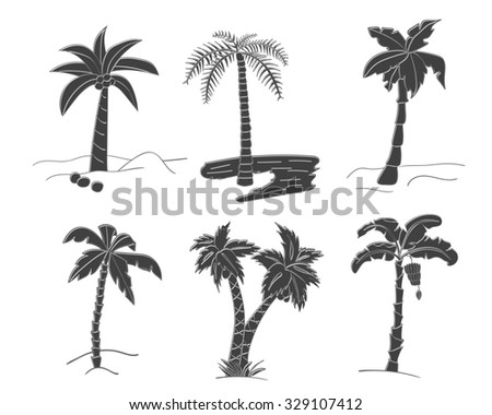 Set of black simple silhouettes of tropical leaves, palm trees, foliage. Hand drawn design elements of a tropical nature. Stylized images and simple shapes for logos and natural decor. Raster version. - stock photo