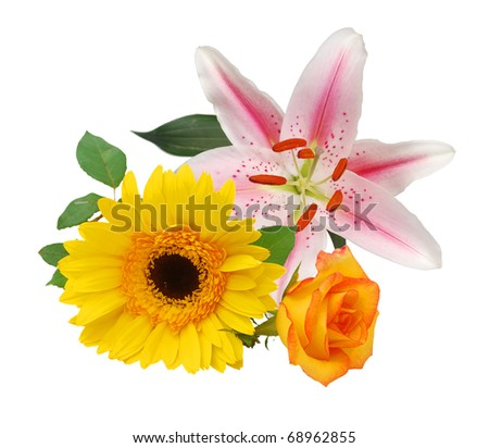 Set of blooms bouquet - stock photo