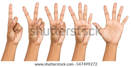 Set of counting hand women sign isolated on white front