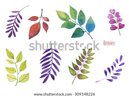 Set of different leaves, hand drawn watercolor illustration,  floral - stock photo