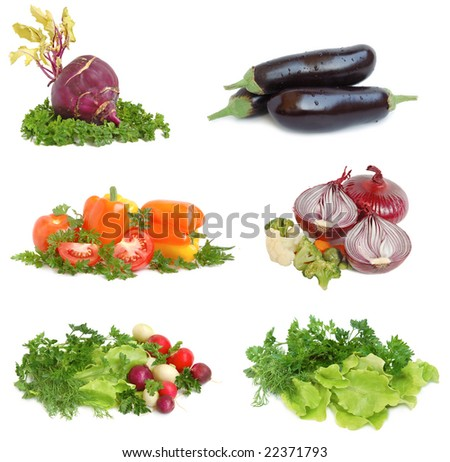 Set of different vegetables on white background