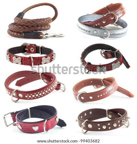 set of dog collars - stock photo