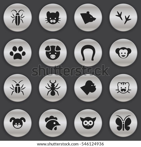 Set Of 16 Editable Zoo Icons. Includes Symbols Such As Cockroach, Puppy, Feline And More. Can Be Used For Web, Mobile, UI And Infographic Design.