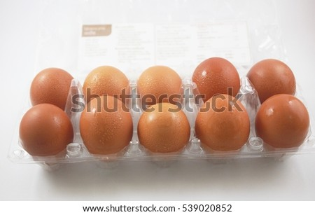 Set of Eggs on white background.
