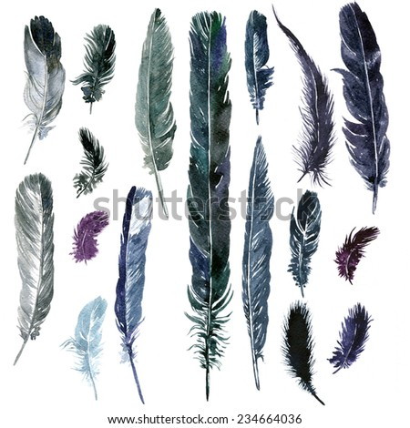 set of feathers, painted in watercolor, hand drawn illustration - stock photo