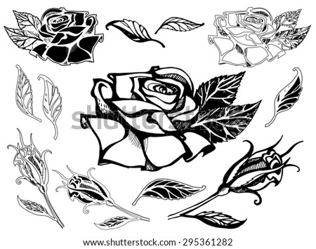 Set of  floral design elements, freehand drawing - rose flowers and leafs