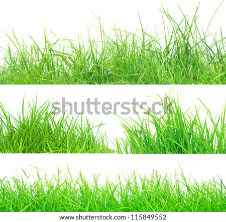 set of fresh spring green grass panorama isolated on white background. - stock photo