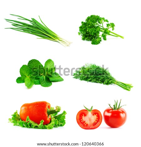 Set of fresh vegetables - stock photo