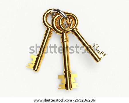 Set of golden keys on the ring isolated on white background - stock photo