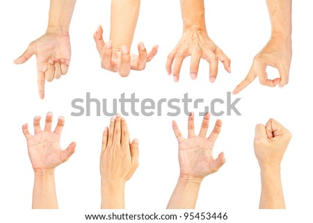 Set of hands on white background