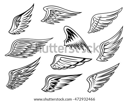 Set of heraldic wings in black and white with feather detail for tatto or logo design, isolated on white