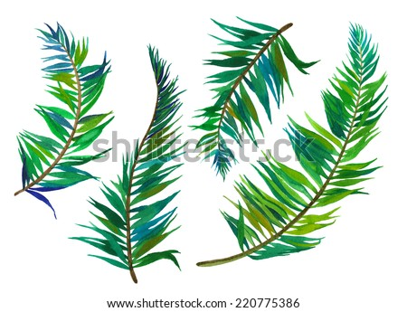 set of isolated palm leaves. artistic realistic illustration - stock photo