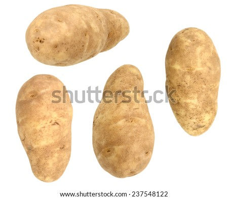 set of long russet potatoes isolated - stock photo