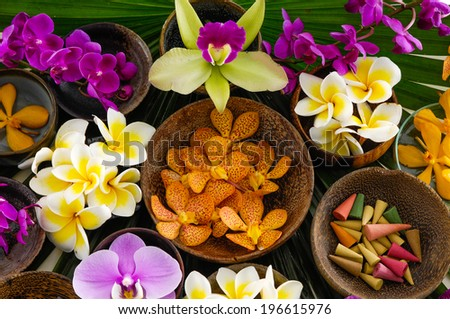 Set of many colorful frangipani and orchid in bowl on green leaf - stock photo