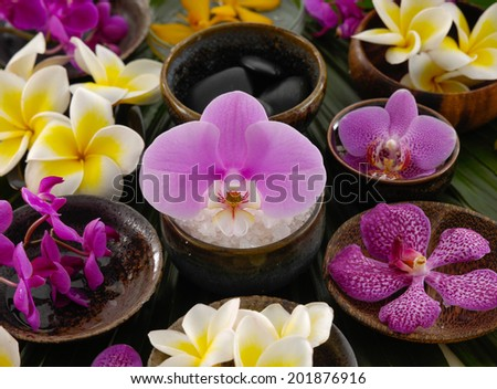 Set of many colorful frangipani and orchid,salt,stone in woodren bowl on green leaf - stock photo