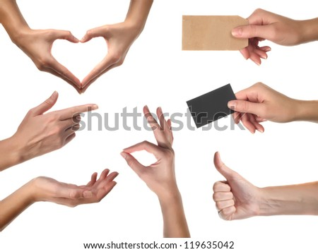 Set of many different hands over white background. With path - stock photo