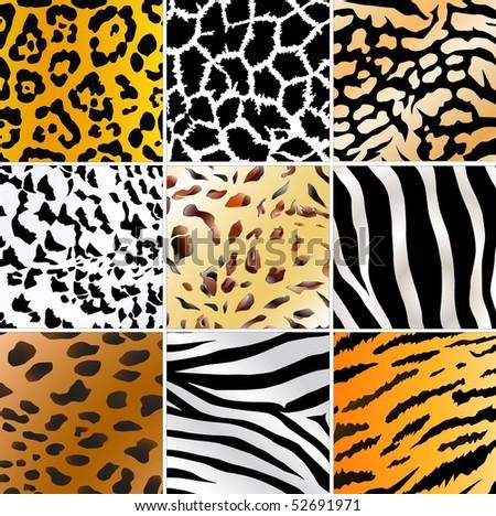 Set of nine different wild animals skin patterns - stock photo