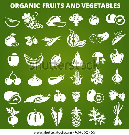 Set of organic vegetables and fruits icons. Organic fruits and vegetables icons illustration