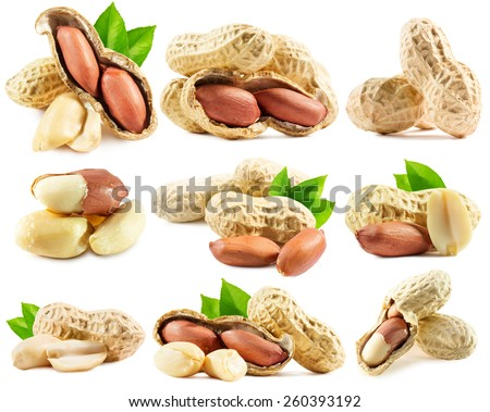 set of peanuts isolated on the white background - stock photo