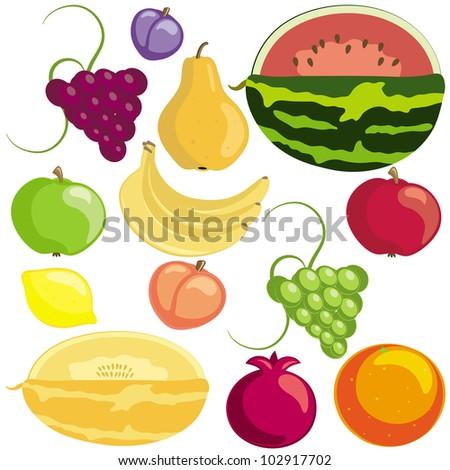Set of ripe fruits on white background (raster version) - stock photo