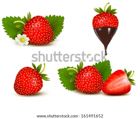 Set of ripe sweet strawberry and flower with leaves and chocolate.  - stock photo