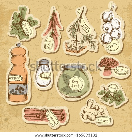 Set of spices and herbs. - stock photo