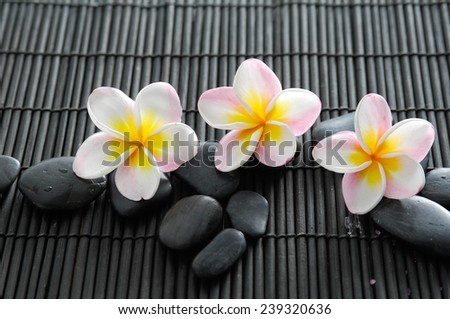 Set of stones with three frangipani on bamboo mat  - stock photo