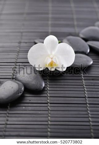 Set of stones with white orchid on bamboo mat
