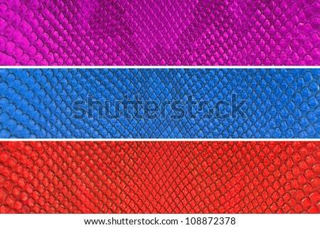 Set of three color python snake skin texture background.
