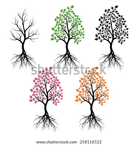 Set of trees with leaves of different color. Black silhouettes on a white background. - stock photo