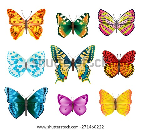 set of various colorful butterflies with open wings - stock photo