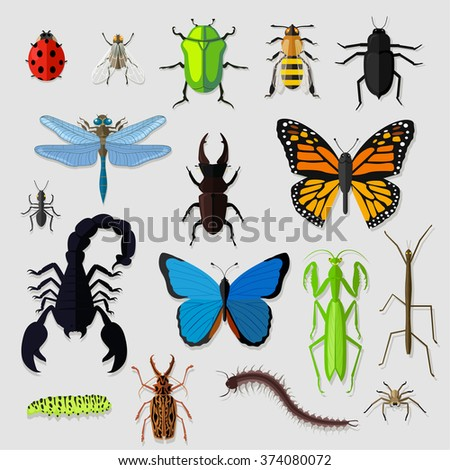 Set of various insects design flat. Bug and butterfly, ant and bee, spider and fly, ladybug and dragonfly, grasshopper wildlife, creature cockroach illustration. Raster - stock photo