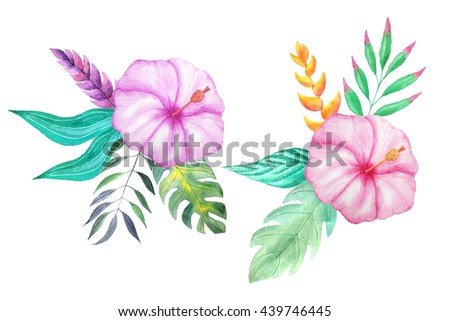 Set Watercolor Hand Painted Tropical Flowers Stock Illustration