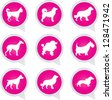 Set Of White Dog on Pink Icons Isolated on White Background - stock